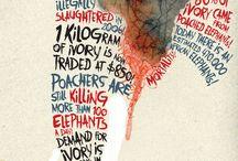 Social Cause Campaigns / by Biljana Kroll