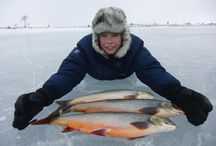 Fishing in Norway / Go fishing in Norway! Find your fishing license at inatur.no