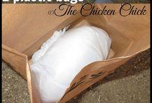 Kippen / Voor het houden van kippen