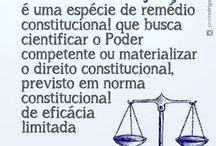 Dir constitucional
