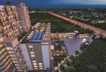 SOHO in Motia Group Zirakpur / SOHO at Motia Group WORKSCAPE, Zirakpur -Chandigarh -comes with world-class amenities and very attractive offers. To know more click here