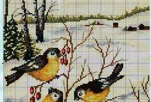 Keresztszemes minták (madarak)