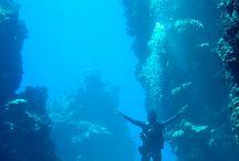 Underwater scenary