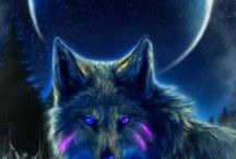 wolves / by Sarina Dotson