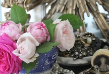 Antique Roses / by Sabrina and Todd Farber