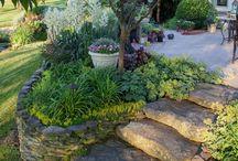 Kryddträdgård