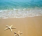 Déco bord de mer / Le bord de mer s'invite dans votre maison ! On mise sur des matériaux naturels comme le chêne et le banbou et sur des teints clair : sable, gris taupe.. / by Mistergooddeal