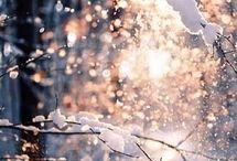the winter / estação preferida