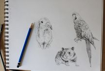 Drawing || Painting References and How to's