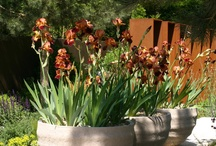 Inspiration Garden Planters
