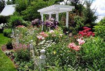 Beautiful Cottage Gardens