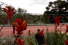 Ellenbrook / Ellenbrook | 6069 | Western Australia