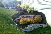 Front Yard Landscaping / by Jessica Forys-Cameron