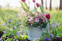 Spring Containers for your Garden / by kellydesignsofCT