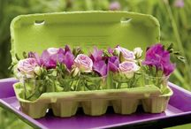 fleurs boite oeuf