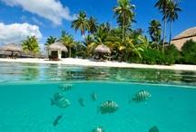 Quiero viajar a !!