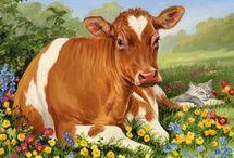ik hou van koeien