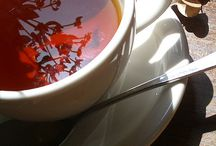 Ayuvedic for Vatas & Essential Oils / Healthy living thru Ayuvedic  and Essential Oils uses. / by Marty Smith