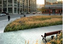 Parks and Urban Space