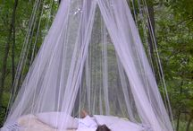 Camping / by Corina Osorio