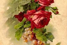 Postais com flores