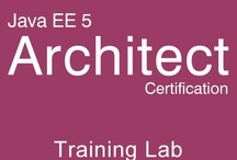 Java Architect Certification Training Lab / SCEA 5 Certification Study Guide and Mock Exam Simulator.