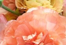 ethereal floreal inpiration