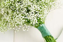 Flowers / wedding inspirations