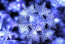 Christmas!  Winter! / by Marla B