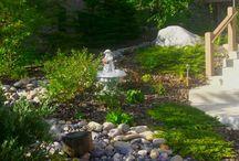 Gardens & Landscaping / by Lucinda Porter RN