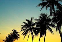 Paisagens Caribe