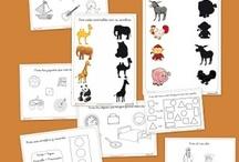 Colección Proyecto lectura y escritura