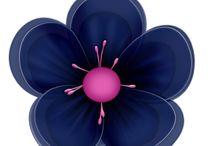 Flowers plaatjes