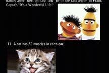 Freakin weird!