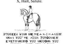 Life as an Equestrian