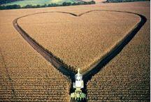 Śmieszne / Humor związany z rolnictwem