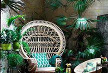 Plants & Interiors