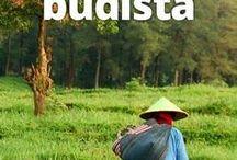 cuento budista