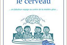 Le cerveau / Cours d'Ellen McHenry sur le cerveau, de l'Association Carpe Diem
