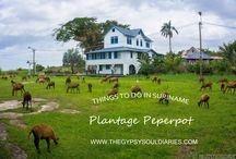 Plantage Peperpot Suriname / Things to do in Suriname: Plantage Peperpot