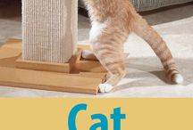 Pet Training Tips by Pet Me Happy / Check out our dog and cat training tips on PetMeHappy.com!
