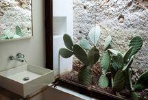 Terrarium Badezimmer