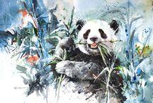 Black-n-White / Panda