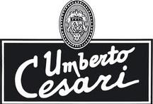 Vinařství UMBERTO CESARI / Rodinné italské vinařství z oblasti Emilia Romagna ve středu Itálie. Tento region produkuje mimo světoznámého Parmezánu a Balsamikových octů také velice zajímavá a osobitá vína. V roce 1965 Umberto Cesari koupil 20-hektarový vinohrad na kopcích Castel San Pietro, založil zde společnost, která nese jeho jméno.