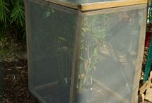 Butterfly enclosure