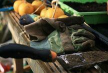 BEDRE HJEM / Boligmagasinet BEDRE HJEM. Boligreportager, brevkasser om økonomi, have, ombygning, gør det selv og indretning. Ny viden om alt fra håndværkerfusk til tilstandsrapporter.