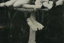 photomontage jorge càceres 194