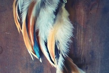 Feather Earcuffs