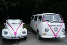 Wedding beetle