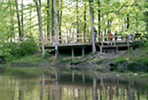 Maryland Campgrounds / Photos of Passport America Participating Campgrounds located in Maryland.